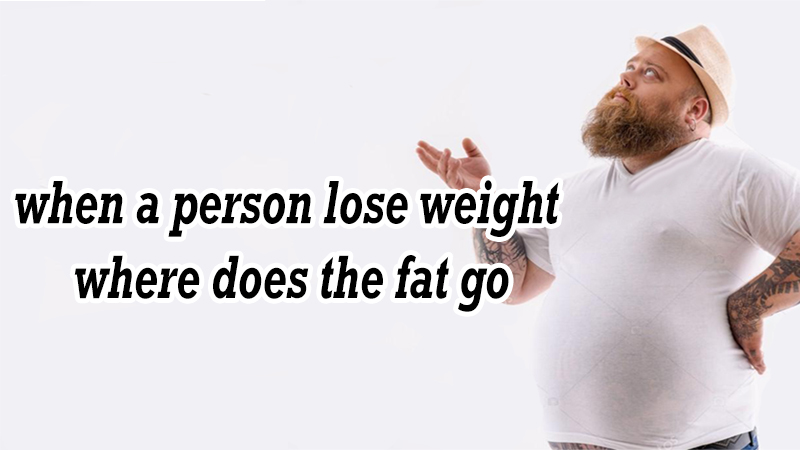 When a person lose weight where does the fat