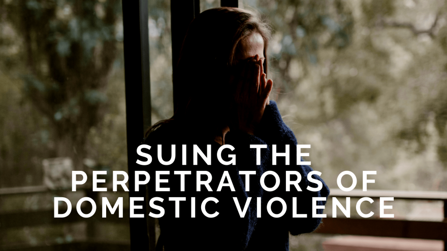 Suing the Perpetrators of Domestic Violence