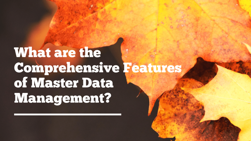 What are the Comprehensive Features of Master Data Management