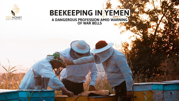 Beekeeping in Yemen A Dangerous Profession Amid Warning of War Bells