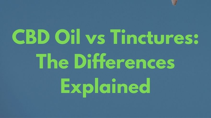 CBD Oil vs Tinctures The Differences Explained
